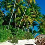 Free online flash games - Lost Island