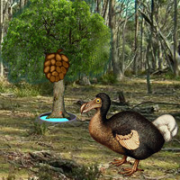 Wowescape Dodo Bird Evolution