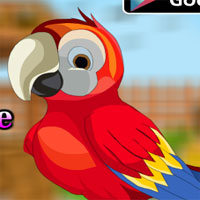 AvmGames Cute Parrot Escape