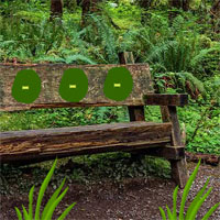 Big Wooden Bench Forest Escape